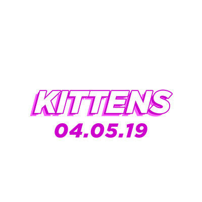 Kittens, Friday, April 5th, 2019