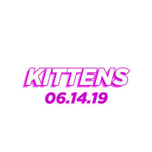 Kittens, Friday, June 14th, 2019