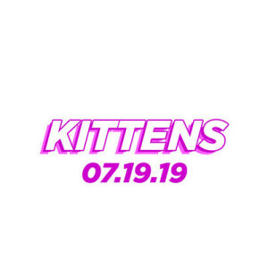 Kittens, Friday, July 19th, 2019
