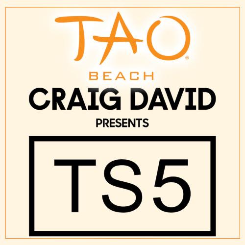 CRAIG DAVID PRESENTS TS5 - TAO Beach Club