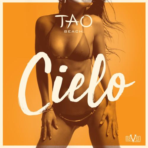 CIELO SUNDAYS - TAO Beach Club