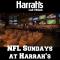 VIP Football Package at Harrah's Sportsbook