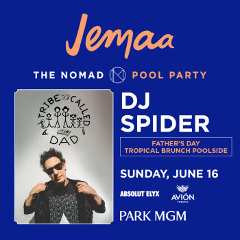 DJ SPIDER A TRIBE CALLED DAD - Sun Jun 16