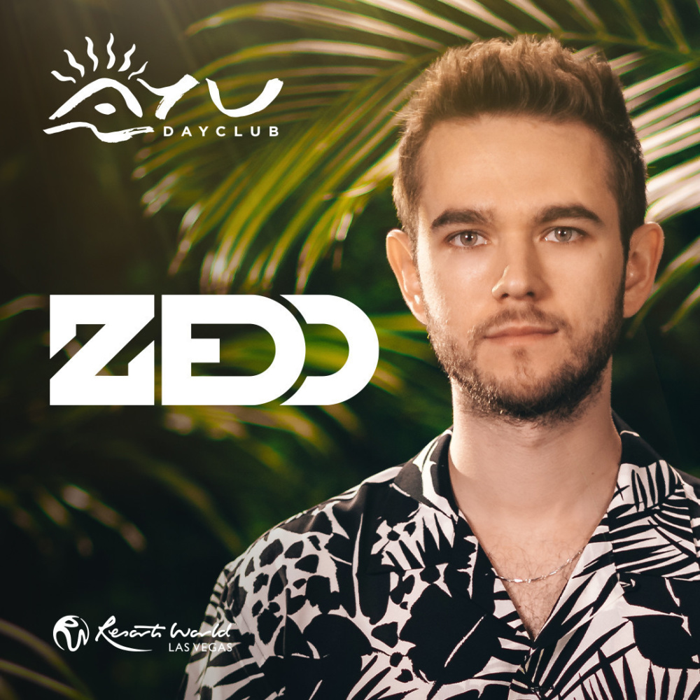 Zedd at Ayu Dayclub thumbnail