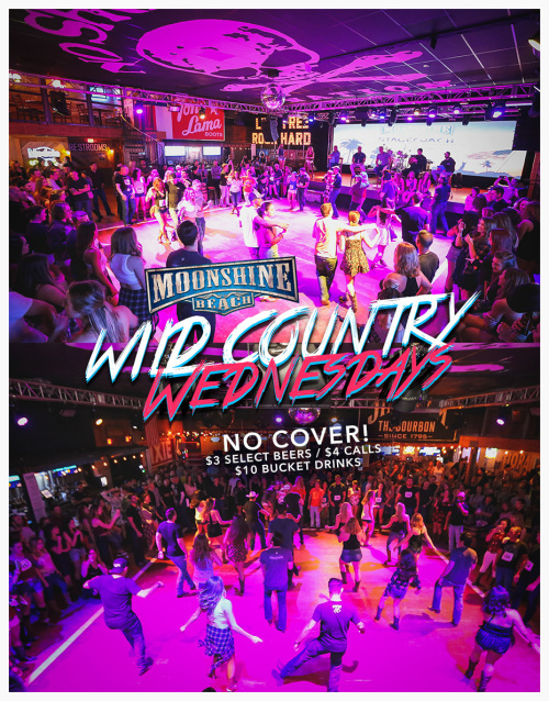 Wild Country Wednesdays at Moonshine Beach - Moonshine Beach