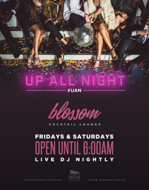 Up All Night - Blossom Cocktail Lounge