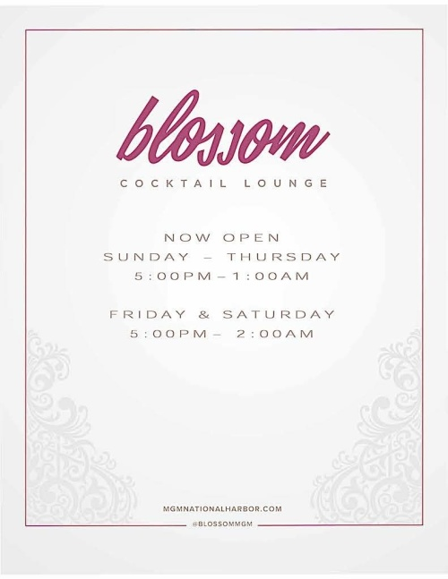 Blossom Cocktail Lounge - Blossom Cocktail Lounge