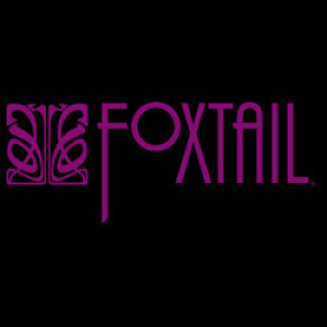 DJ Hollywood at Foxtail Nightclub